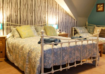 Spacious double or family bedroom Beech Ad Astra Guesthouse