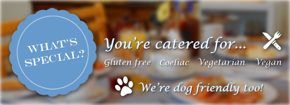 Gluten free, vegan, vegetarian & coeliac diets catered for